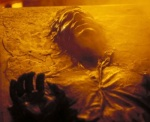 Han and Luke are both sent into the carbonite chamber, but Luke makes it out unfrozen.