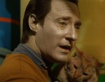 Instead of just crying over finding his lost cat, Data should have had a chance to revisit old memories.