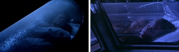 Ripley begins and ends the film Aliens in hypersleep with a fellow survivor.