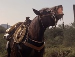Whiskey the horse steals the show and is the best character in The Villain.