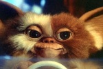 Gizmo is cute but not very interesting in Gremlins.