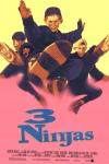 3 Ninjas movie poster.